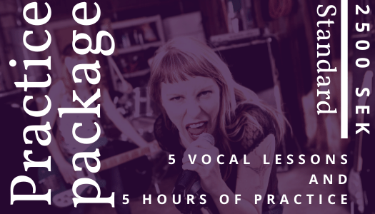Voice lessons package with delia ivan vocal coach